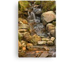 Snowdon Stream Canvas Print