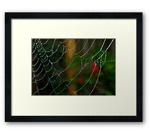 Lace work Framed Print