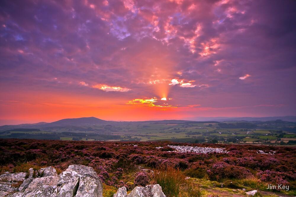 Stiperstones Ridge  Shropshire Hills by James  Key