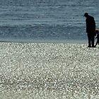 Exploring Low Tide by Joe Mortelliti