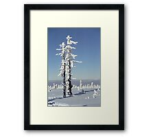 A diamond-dust day at the Smrk mountain 1 (Jizera mountains, Czech Republic) Framed Print