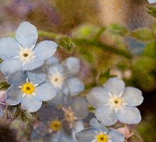 Blue Floral by BoB Davis