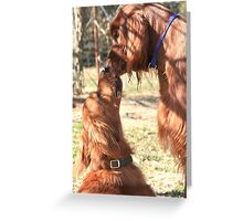 Pals  Greeting Card
