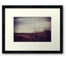 Grass Blown Framed Print