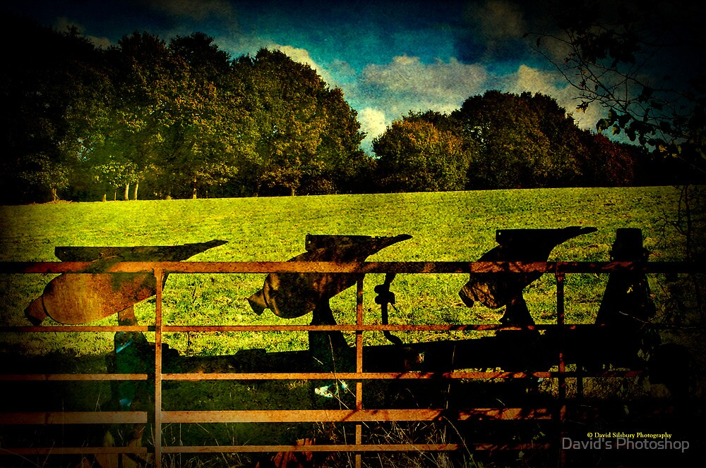 The Old Plough by David's Photoshop