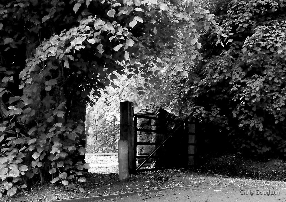 Countryside Walkway by Chris Goodwin