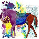 Crazy Horse by Liviu Matei