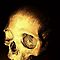 Skulls 1: Human