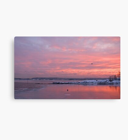 I love these wonderful mornings ... Canvas Print