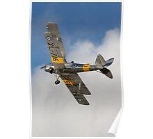 Tiger Moth 4 Poster