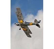 Tiger Moth 4 Photographic Print