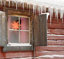 Star in window by Eivor Kuchta