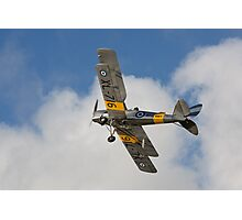 Tiger Moth 3 Photographic Print