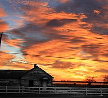 Early Morning Country Sunrise by Bo Insogna