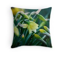 As Friendships Bloom... Throw Pillow