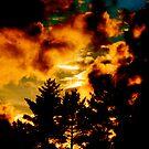 sun set fire 1 by reececarnley