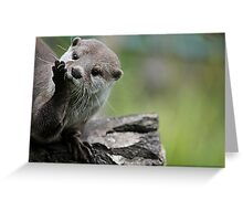 Otter Dreams Greeting Card