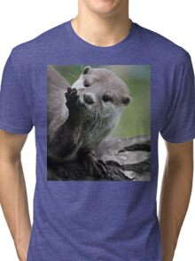Otter Dreams Tri-blend T-Shirt
