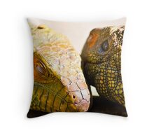 Exterior Texture Throw Pillow
