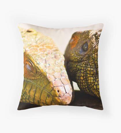 Exterior Texture Throw Pillow