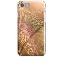 Rainbow Web iPhone Case/Skin