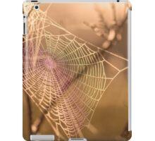 Rainbow Web iPad Case/Skin