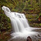 Liffey Falls....Beyond the Barrier!!! by tinnieopener