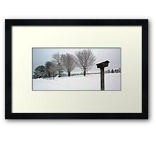 True Snow-Birds Framed Print