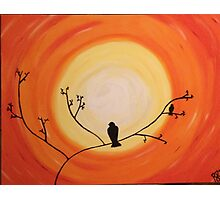 Orange sky bird  Photographic Print