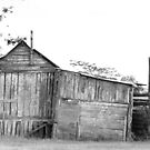 The Old Dairy Shed by Beth  Wode