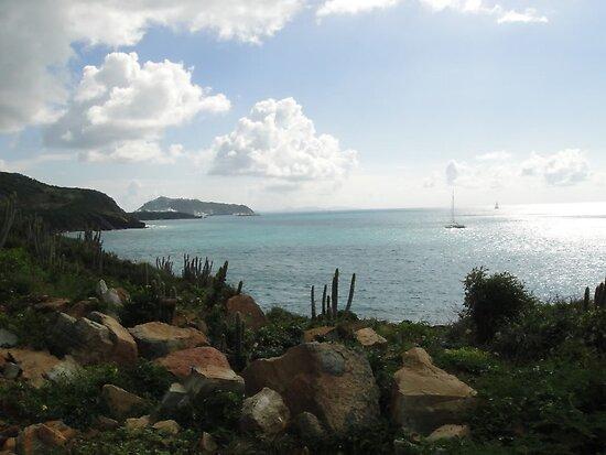 Cay Bay by islefox