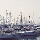 Fenerbahçe Marina,Turkey by rasim1