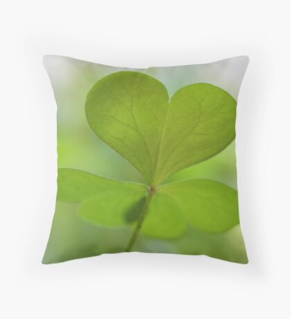 have a lovely day! Throw Pillow