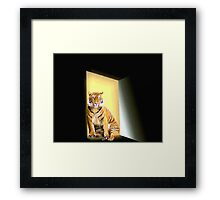 Waiting & Expecting Framed Print