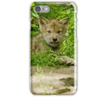 Big Blue Eyes iPhone Case/Skin