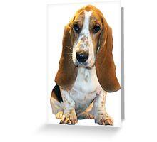 Cute Basset Greeting Card