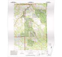 USGS Topo Map Oregon Dale 279550 1995 24000 Poster