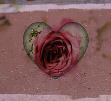 Rose In A Heart by Kathleen Struckle