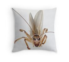 Up Close and Personal - Raspy Cricket Throw Pillow