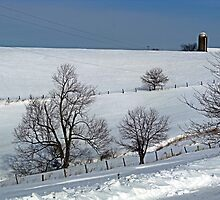 Winter on the Hillside by vigor