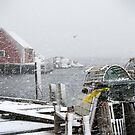 Peggy's cove January 2011 by Roxane Bay