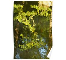 Green reflection Poster