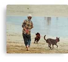 Go Fetch ... Metal Print