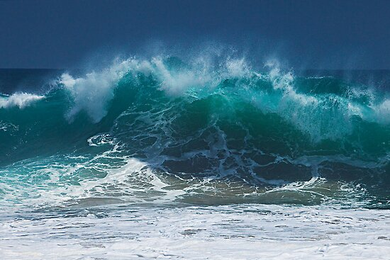 The Perfect Wave by Brendon Perkins