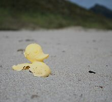 Beached as, so beached by Roger Wain
