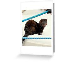 Day tripper Greeting Card