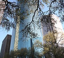 Downtown Houston ..... by LynnEngland