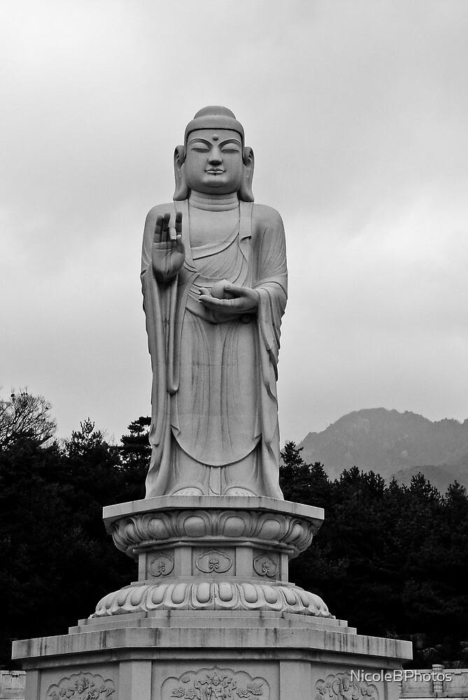 Donghwasa Buddha statue by NicoleBPhotos