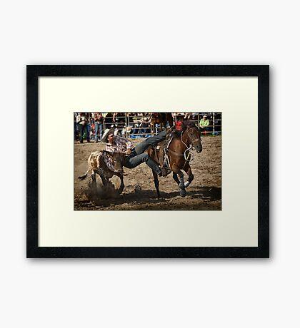 Picton Steer Wrestler Framed Print