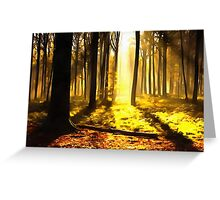 Forest 10 Greeting Card